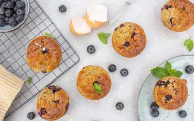 Gezonde havermout muffins met blauwe bes